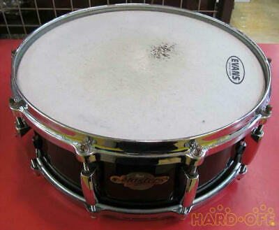 Pearl Masters All Maple Shell