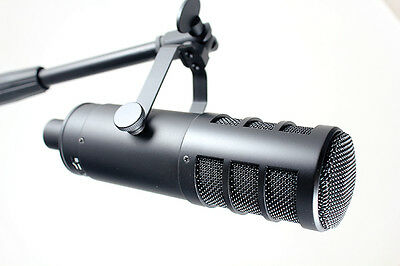 Golden Age Project D2 Dynamic Broadcast Microphone