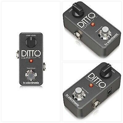 TC Electronic DITTO LOOPER • 333.80£