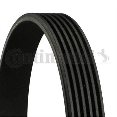 V-Ribbed Belt 6PK995 Fan CITROEN C4 Saloon 2.0 16V C5 II 1.8 Break III C8 Alt • 21.95£