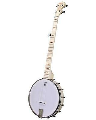 Deering Go Goodtime Special Openback Banjo From Japan Safey Shipping • 1,592.36£