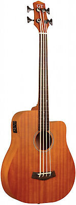 25 inches Fretless Acoustic-Electric Micro Bass by Gold Tone