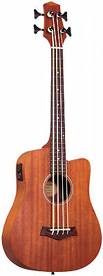 23 inches Fretless Acoustic-Electric Micro Bass with Bag by Gold Tone