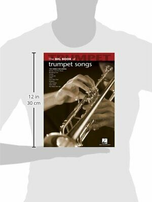 Big Book Of Trumpet Songs Big Book Hal Leonard • 13.27£