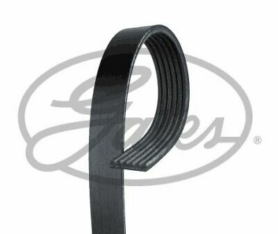 Gates 6pk1148 V-ribbed Belts • 11.58£