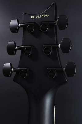 Paul Reed Smith(PRS) DW(Dustie Waring) CE 24  Floyd  Limited Edition Gray Black • 2,692.84£